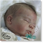 AW380026 - Dollkit 19 - Mikey