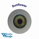 631200 - Eyes : Polyglass ogen  Sunflower